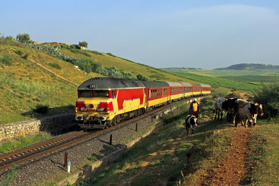 morocco-train-fes